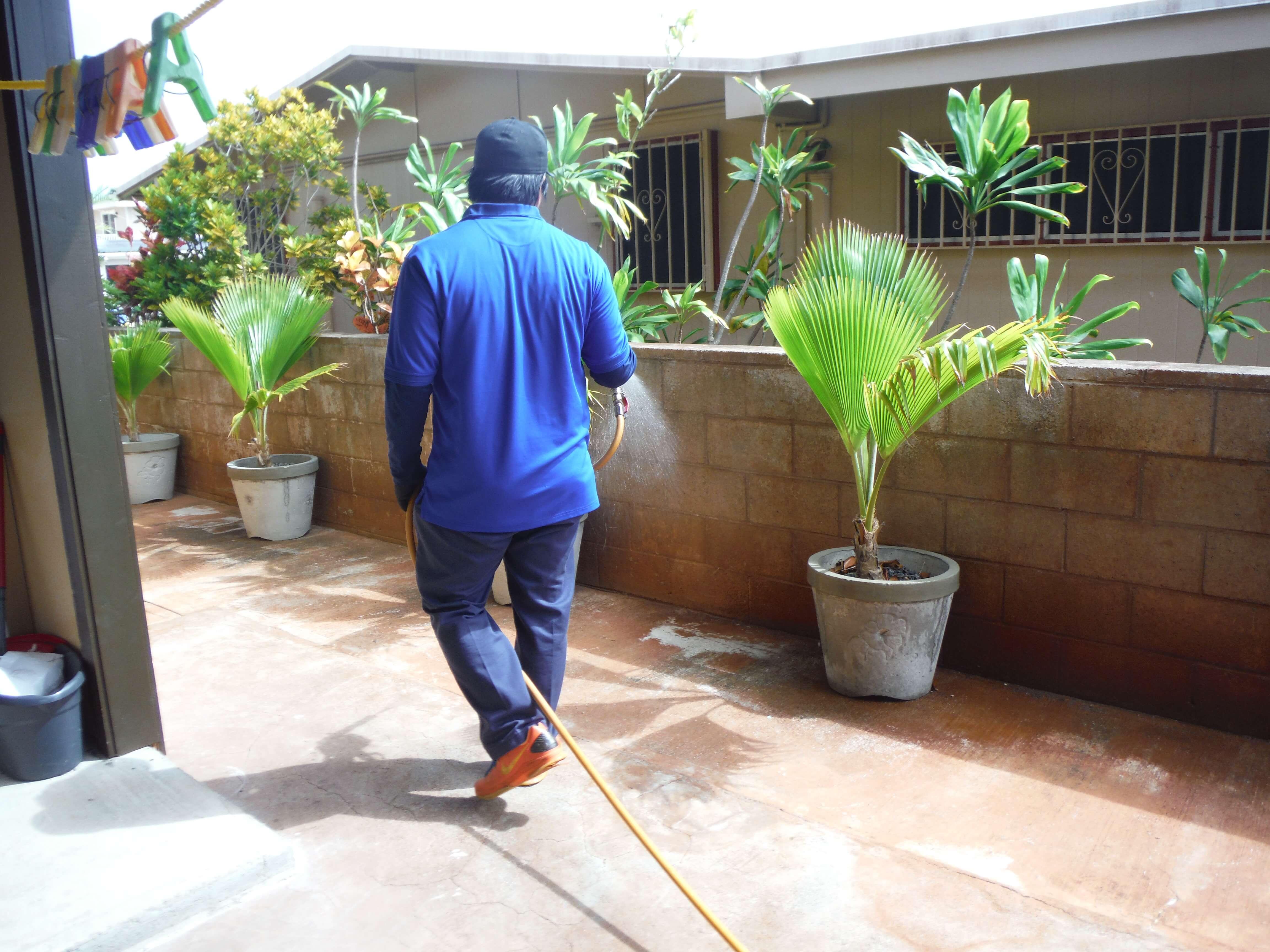 state termite u0026 pest control aiea hawaii
